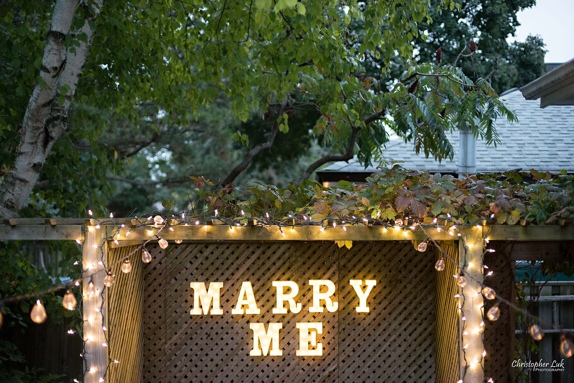 Christopher Luk Toronto Wedding Photographer - Backyard Surprise Proposal Engaged Engagement Gazebo Christmas Fairy Twinkle Lights Flower Petals Marry Me Wide Lights Marquee Letters