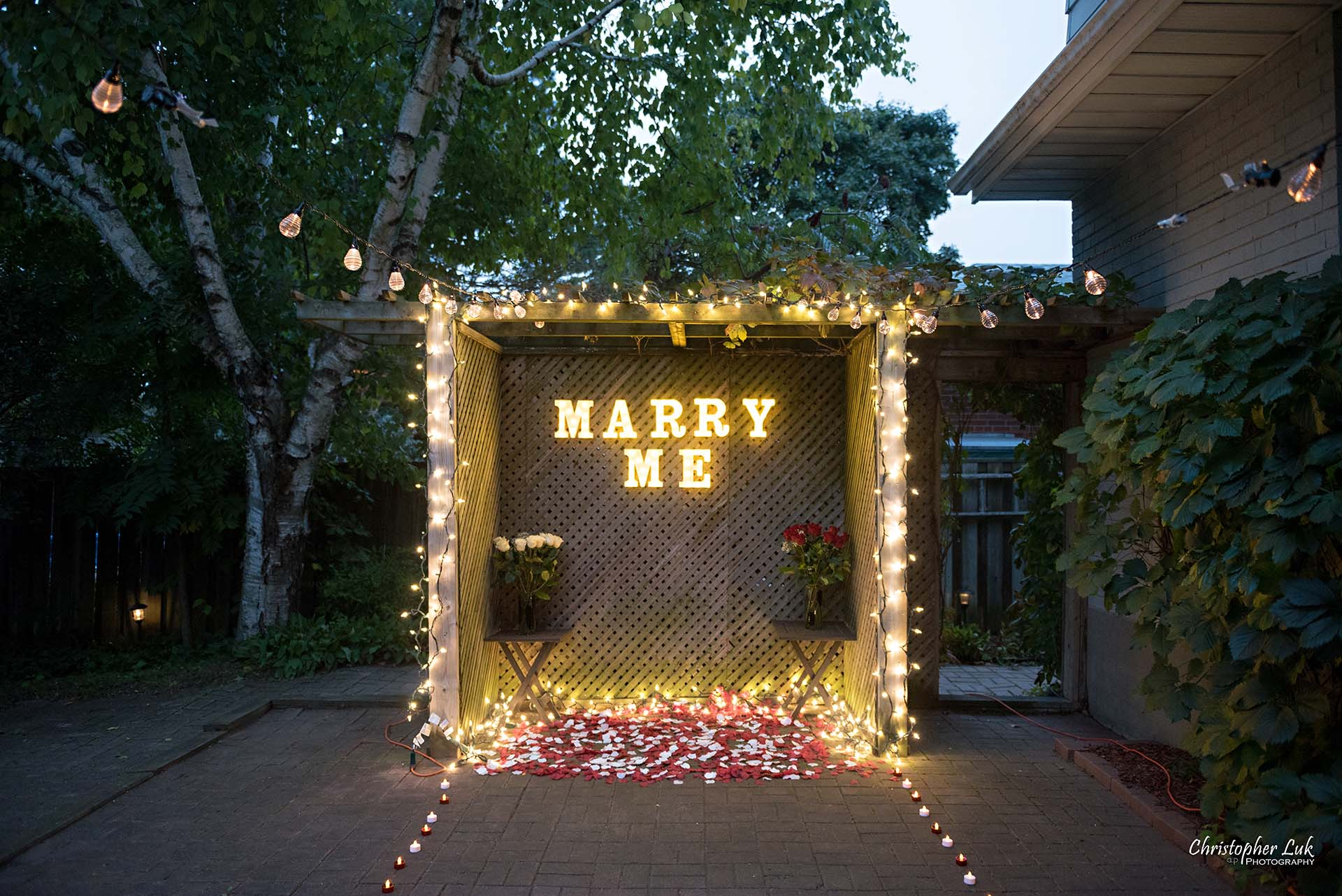 Christopher Luk Toronto Wedding Photographer - Backyard Surprise Proposal Engaged Engagement Gazebo Christmas Fairy Twinkle Lights Flower Petals Marry Me Wide Lights Setup Wide
