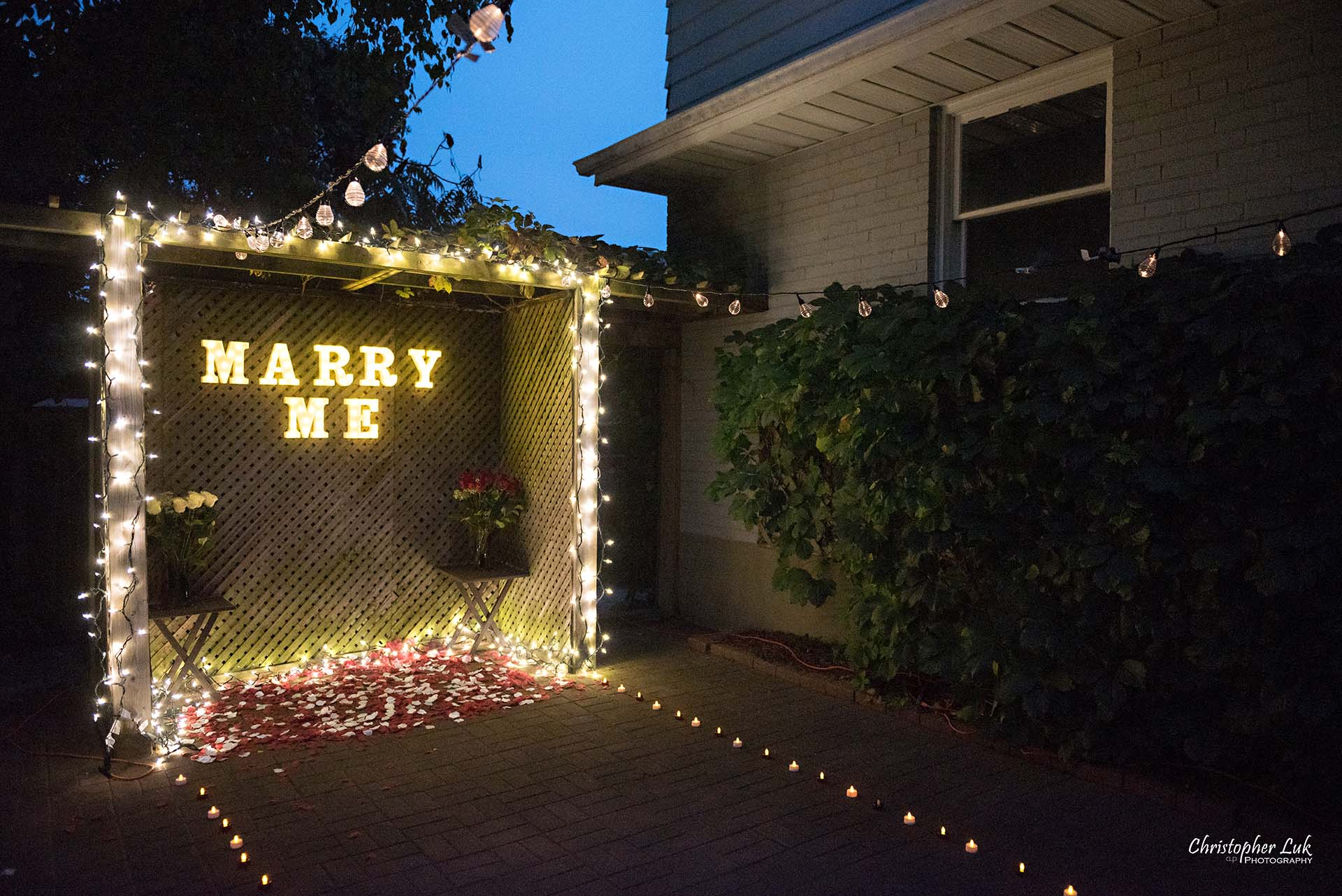 Christopher Luk Toronto Wedding Photographer - Backyard Surprise Proposal Engaged Engagement Gazebo Christmas Fairy Twinkle Lights Flower Petals Marry Me Wide Lights Setup Diagonal