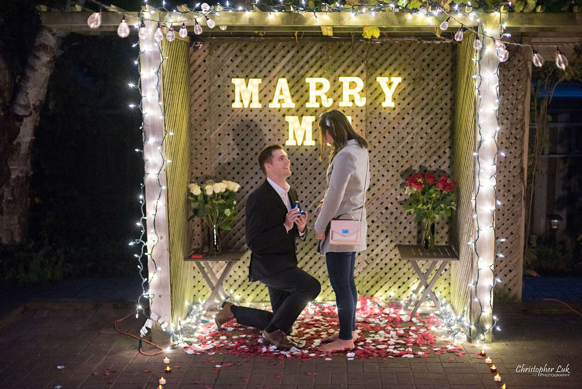 Christopher Luk Toronto Wedding Photographer - Backyard Surprise Proposal Engaged Engagement Gazebo Christmas Fairy Twinkle Lights Flower Petals Marry Me - Bride and Groom Natural Candid Photojournalistic Down on One Knee