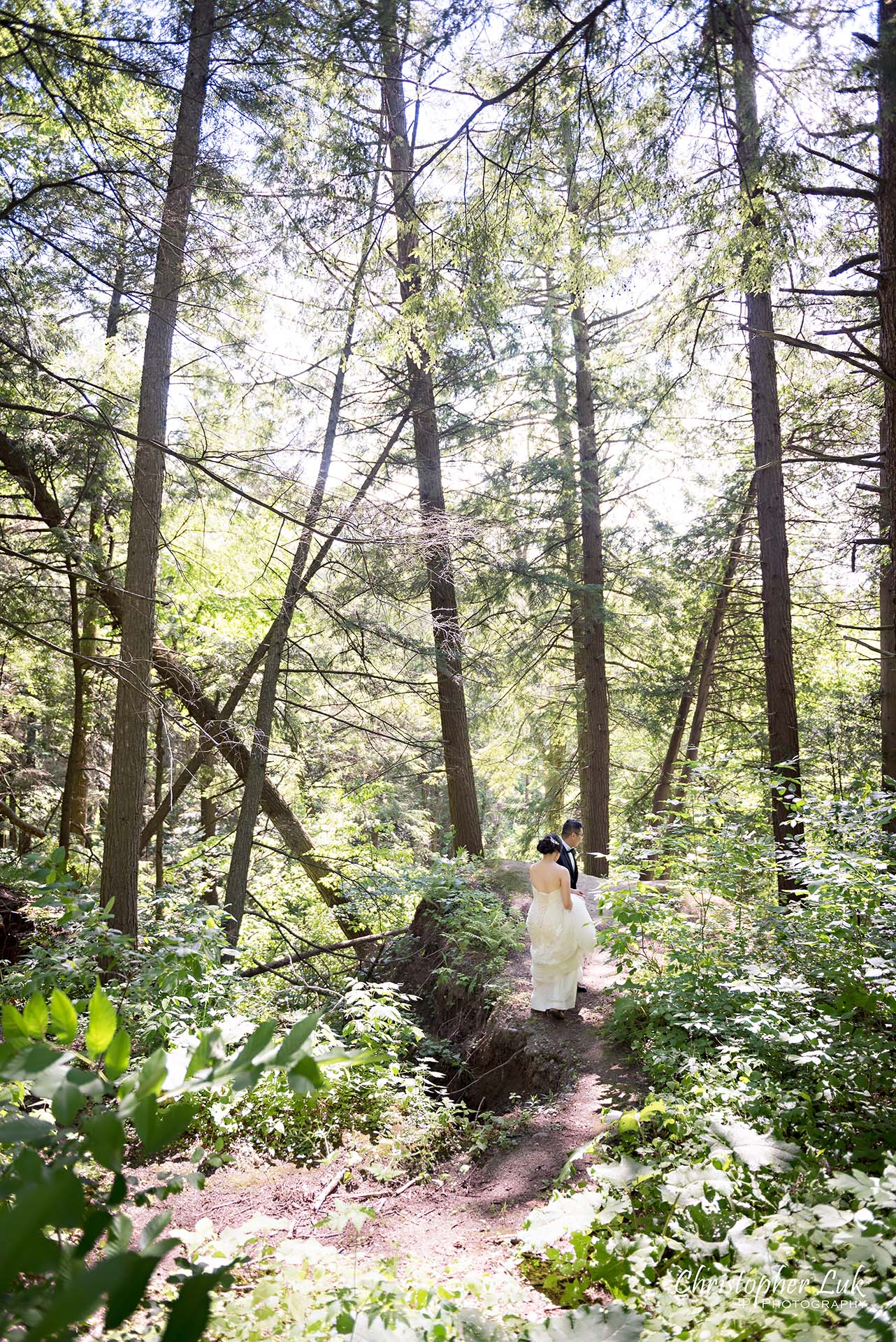 Christopher Luk Toronto Christian Community Church Kleinburg McMichael Art Gallery Presidente Banquet Hall Vaughan Wedding Photographer Bride Groom Natural Candid Photojournalistic Walking Climbing Forest Cliff Lookout Overlook Woods Wooded Area