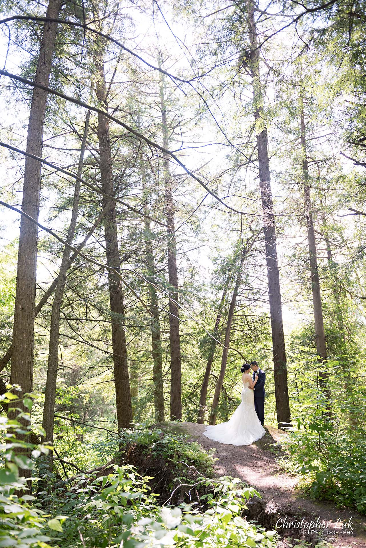 Christopher Luk Toronto Christian Community Church Kleinburg McMichael Art Gallery Presidente Banquet Hall Vaughan Wedding Photographer Bride Groom Natural Candid Photojournalistic Forest Cliff Lookout Overlook Woods Wooded Area Hug Hold Intimate Tall Trees Leading Lines Creative Portrait
