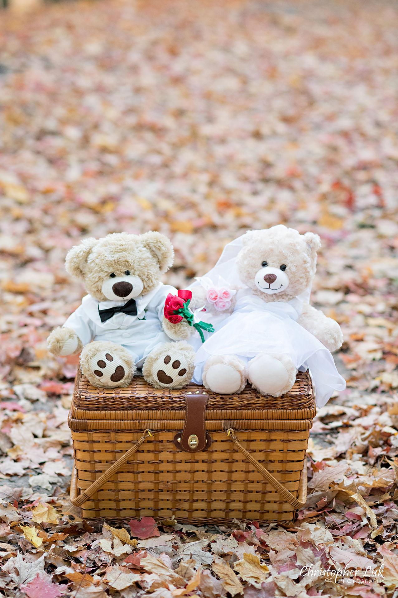 Christopher Luk Toronto Wedding Engagement Session Photographer Autumn Fall Leaves Natural Candid Photojournalistic Hiking Trail Stuffed Animal WongFu Productions Spencer Bear Picnic Basket Portrait