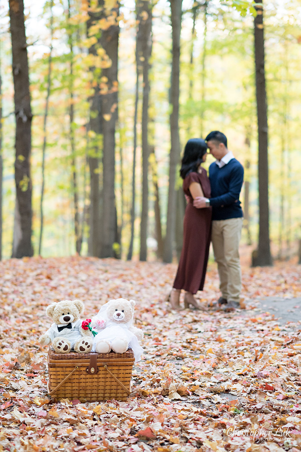 Christopher Luk Toronto Wedding Engagement Session Photographer Autumn Fall Leaves Natural Candid Photojournalistic Bride Groom Hiking Trail Stuffed Animal WongFu Productions Spencer Bear Picnic Basket Trees Hug