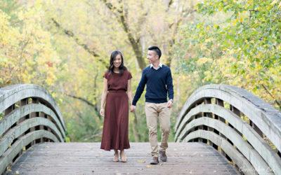 Toronto Autumn Fall Leaves Wedding Engagement Session